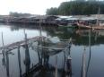 Mairood resort Thailand