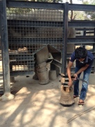 Animal Rescue and release centre, Cambodia