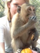 Animal rescue and release centre, Cambodia